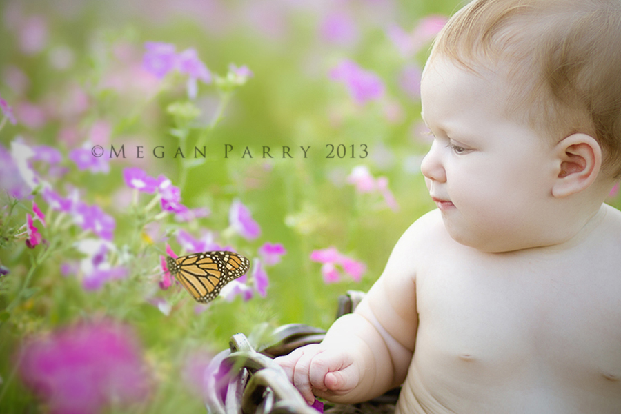 just love photographing babies in nature. Their expressions of ...